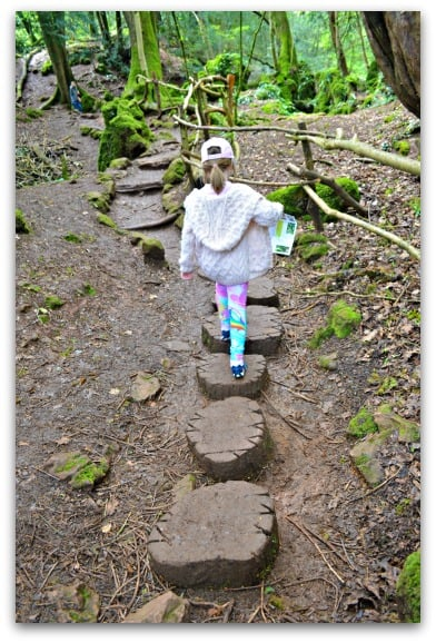 Stepping stones at Puzzlewood