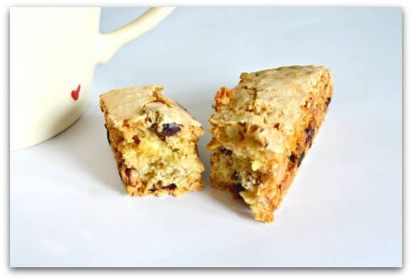 Cranberry Hazelnut and White Chocolate Biscotti