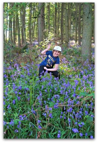 Cheesy bluebell photo