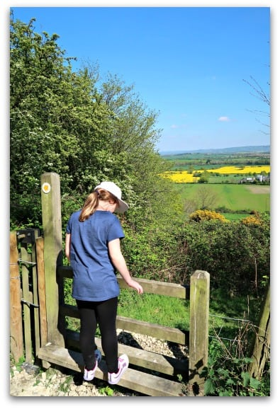 Taking in the view on our bluebell walk