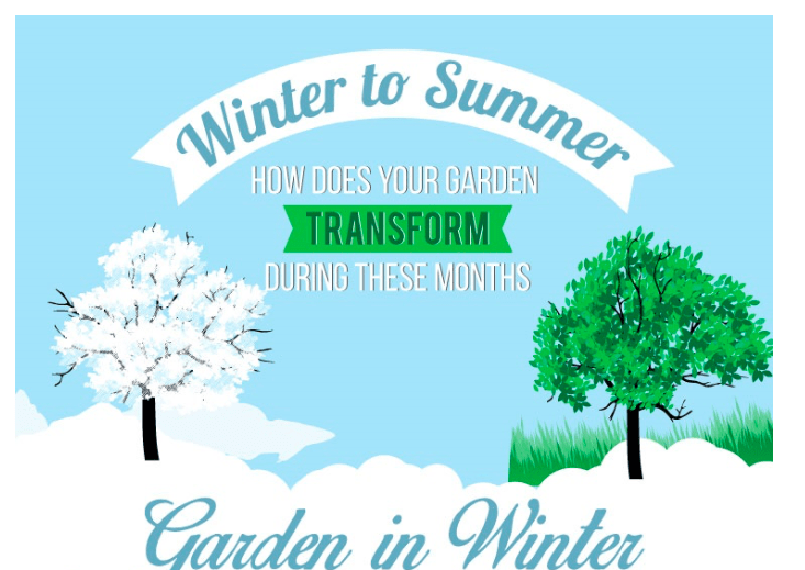 How To Help Your Garden In All Seasons