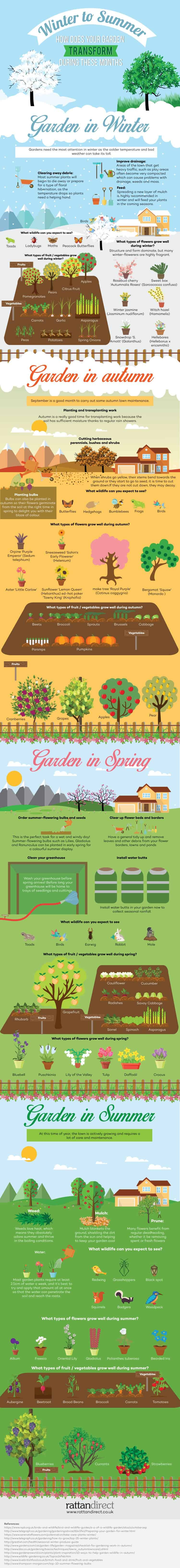 Winter-to-Summer---How-Does-Your-Garden-Transform-During-These-Months (1)