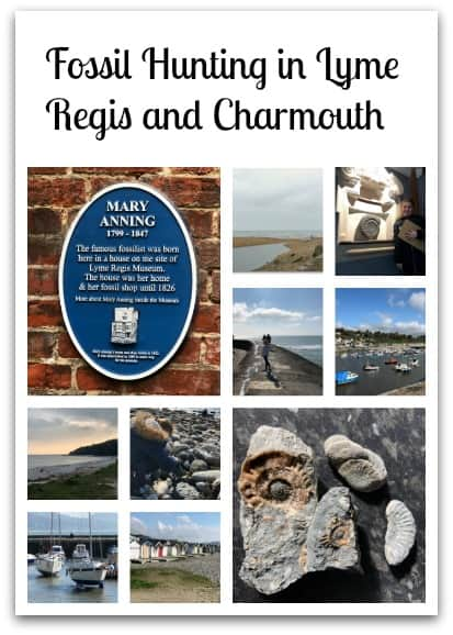 Fossil Hunting in Lyme Regis and Charmouth