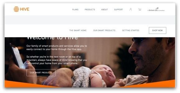 Hive Website