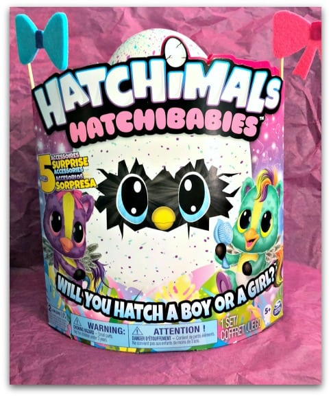 We're EGGspecting! Hatchimals HatchiBabies
